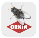 Orkin Bug Battle